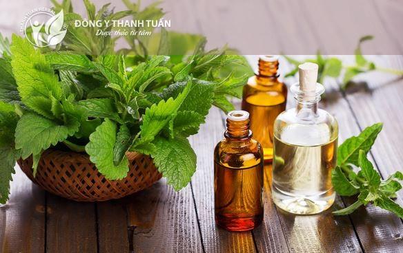 Nước súc miệng từ thảo dược giúp điều trị hôi miệng hiệu quả