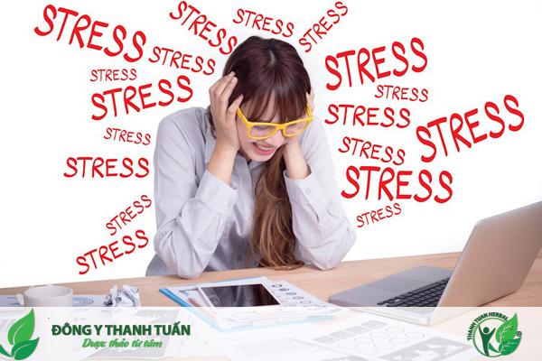 Stress là một trong nguyên nhân gây hội chứng ruột kích thích